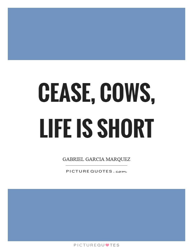 Cease, cows, life is short Picture Quote #1