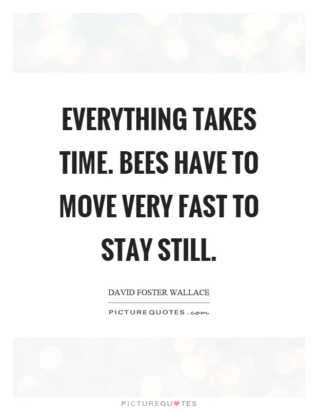 Everything takes time. Bees have to move very fast to stay still Picture Quote #1
