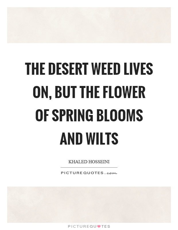 The desert weed lives on, but the flower of spring blooms and wilts Picture Quote #1