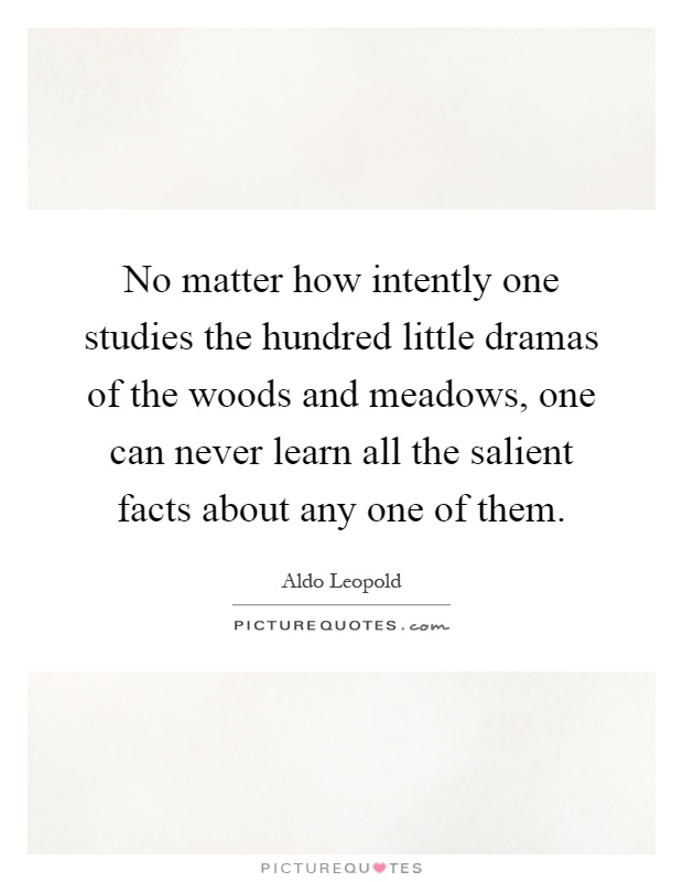 No matter how intently one studies the hundred little dramas of the woods and meadows, one can never learn all the salient facts about any one of them Picture Quote #1