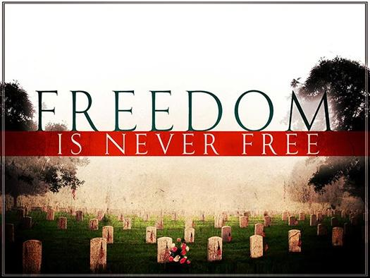 Freedom is never free Picture Quote #1