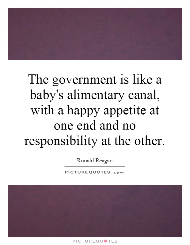 The government is like a baby's alimentary canal, with a happy appetite at one end and no responsibility at the other Picture Quote #1