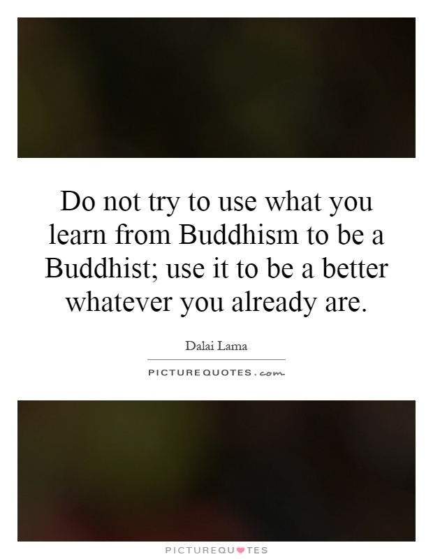 Do not try to use what you learn from Buddhism to be a Buddhist; use it to be a better whatever you already are Picture Quote #1