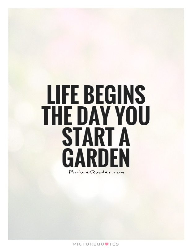 Quotes Garden Extraordinary Life Begins The Day You Start A Garden  Picture Quotes
