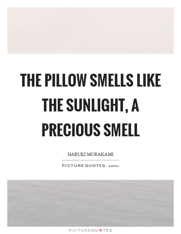 The pillow smells like the sunlight, a precious smell Picture Quote #1