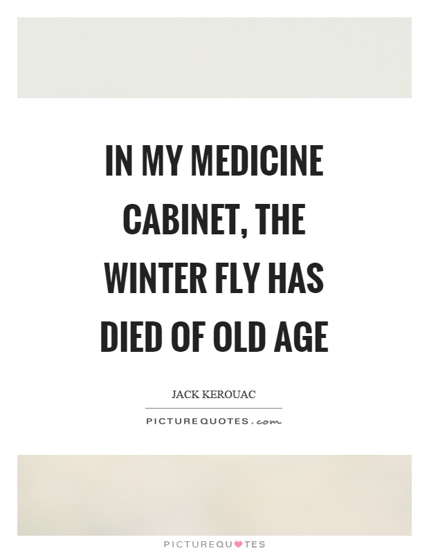 In my medicine cabinet, the winter fly has died of old age Picture Quote #1