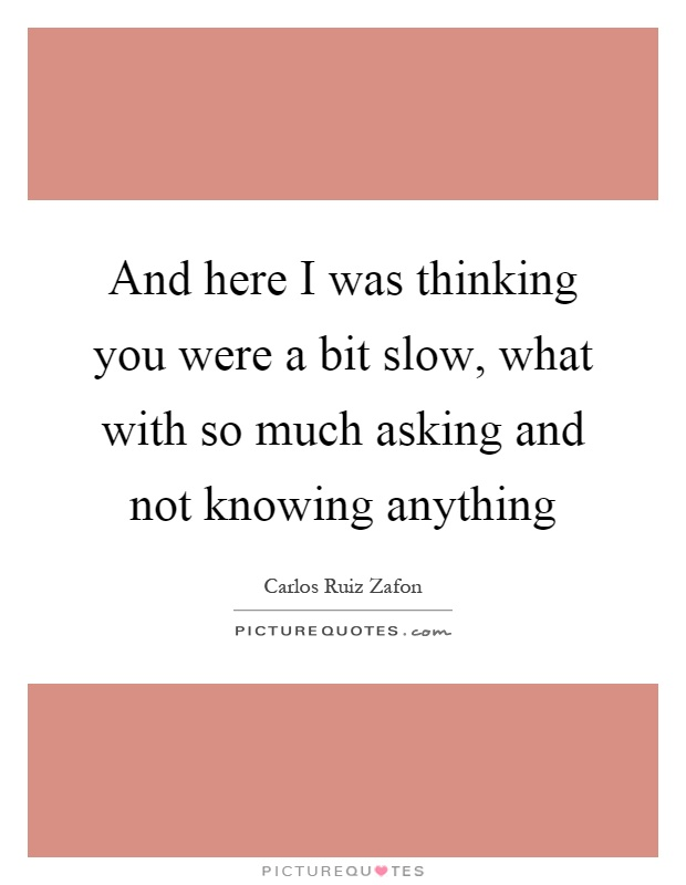 And here I was thinking you were a bit slow, what with so much asking and not knowing anything Picture Quote #1