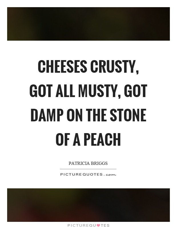 Cheeses crusty, got all musty, got damp on the stone of a peach Picture Quote #1