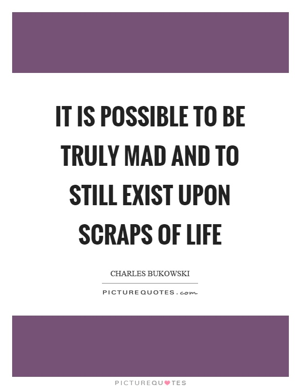 It is possible to be truly mad and to still exist upon scraps of life Picture Quote #1