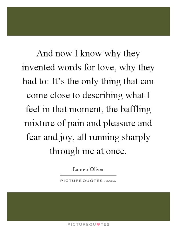 And now I know why they invented words for love, why they had to: It's the only thing that can come close to describing what I feel in that moment, the baffling mixture of pain and pleasure and fear and joy, all running sharply through me at once Picture Quote #1