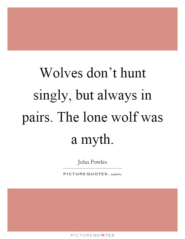 Wolves don't hunt singly, but always in pairs. The lone wolf was a myth Picture Quote #1