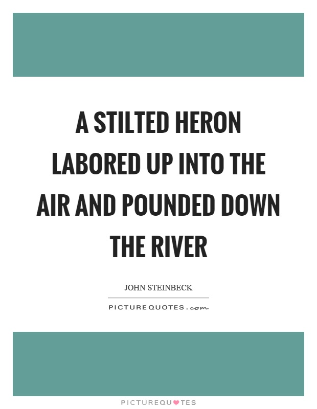 A stilted heron labored up into the air and pounded down the river Picture Quote #1