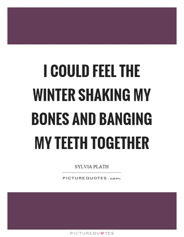 I could feel the winter shaking my bones and banging my teeth together Picture Quote #1
