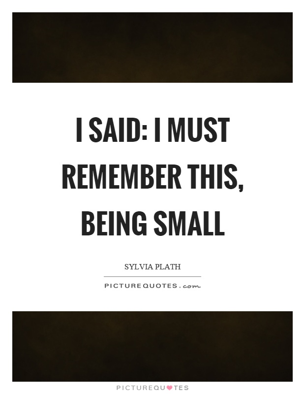 I said: I must remember this, being small Picture Quote #1