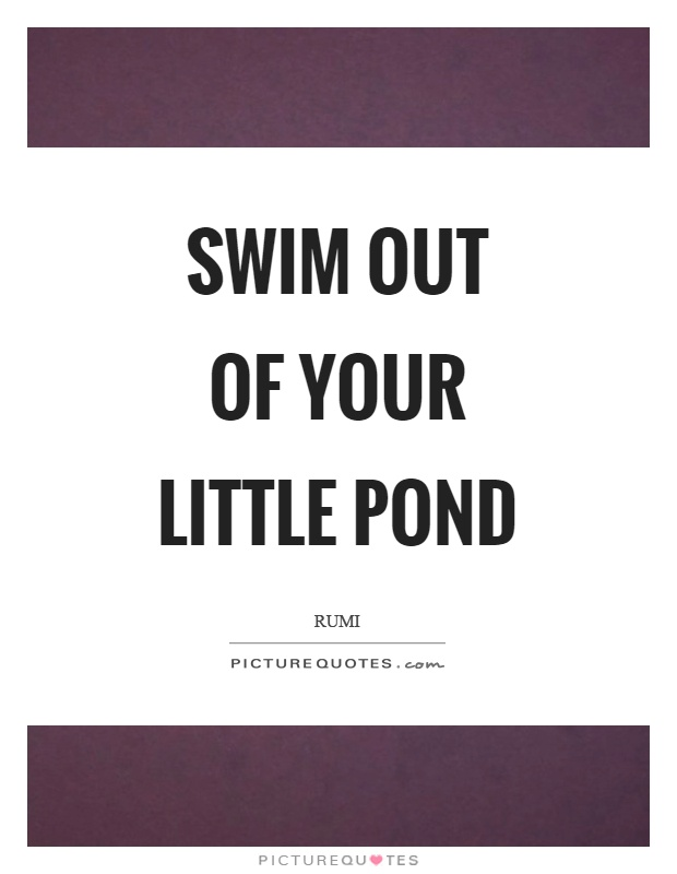 Swim out of your little pond Picture Quote #1
