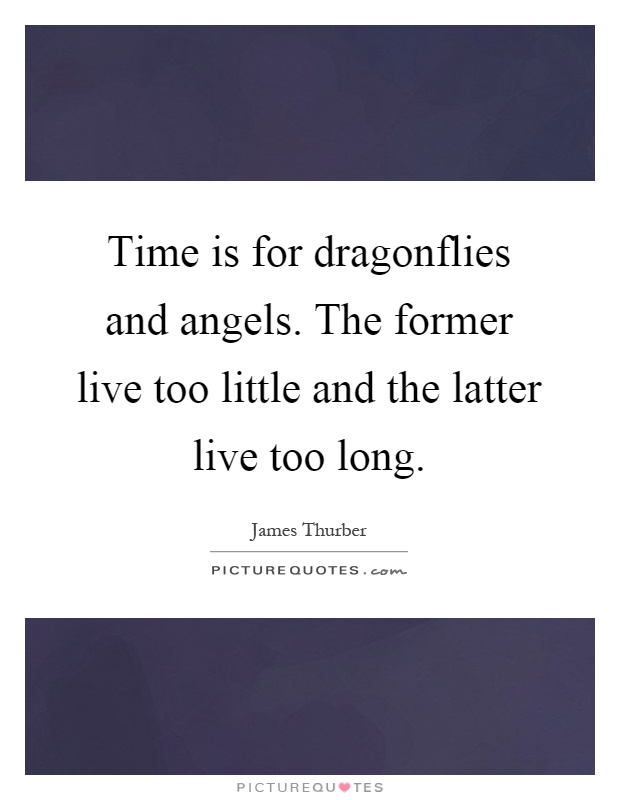 Time is for dragonflies and angels. The former live too little and the latter live too long Picture Quote #1