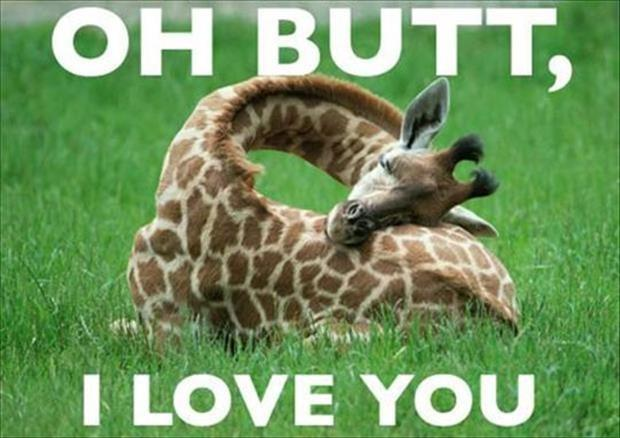 Oh butt, I love you Picture Quote #1