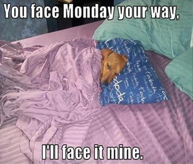 You face Monday your way, and I'll face it mine Picture Quote #1
