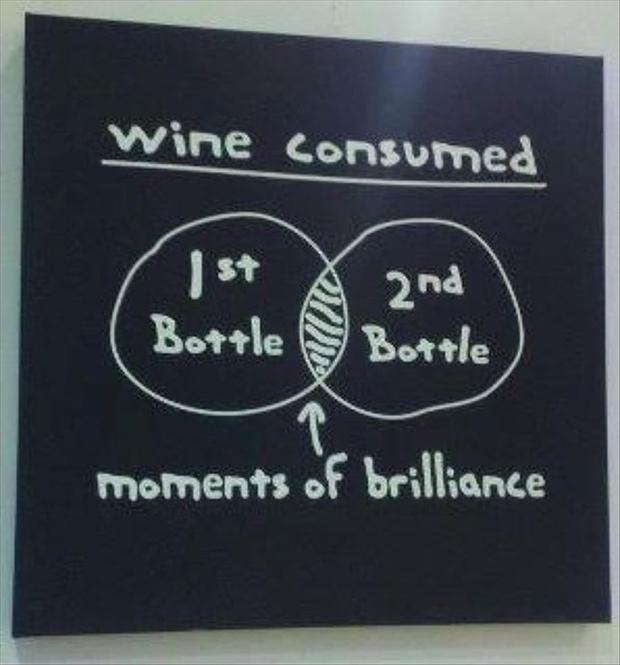 Wine consumed. 1st bottle. 2nd bottle. Moments of brilliance Picture Quote #1