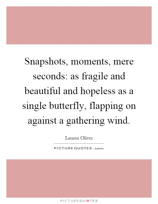 Snapshots, moments, mere seconds: as fragile and beautiful and hopeless as a single butterfly, flapping on against a gathering wind Picture Quote #1