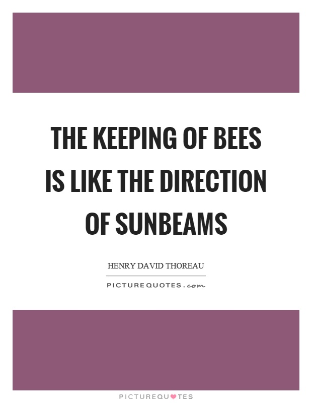 The keeping of bees is like the direction of sunbeams Picture Quote #1