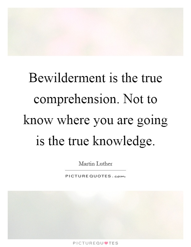 Bewilderment is the true comprehension. Not to know where you are going is the true knowledge Picture Quote #1