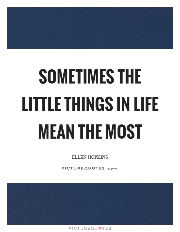 Sometimes the little things in life mean the most Picture Quote #1