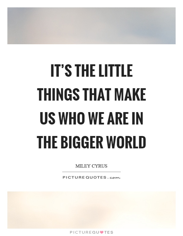 It's the little things that make us who we are in the bigger world Picture Quote #1