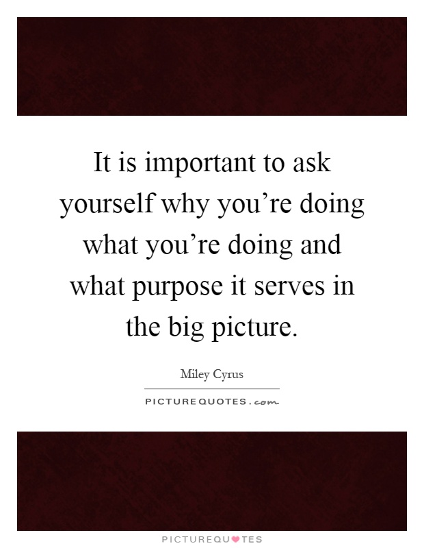 It is important to ask yourself why you're doing what you're doing and what purpose it serves in the big picture Picture Quote #1