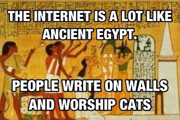 The internet is a lot like ancient Egypt. People write on walls and worship cats Picture Quote #1
