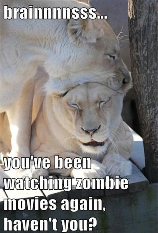 Brainnnnsss... You've been watching zombie movies again, haven't you Picture Quote #1