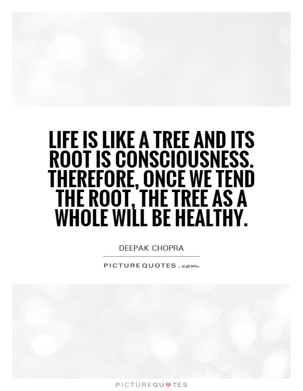 Life is like a tree and its root is consciousness. Therefore, once we tend the root, the tree as a whole will be healthy Picture Quote #1