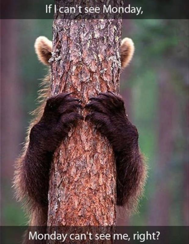 If I can't see Monday, Monday can't see me, right? Picture Quote #1