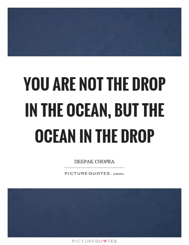 You are not the drop in the ocean, but the ocean in the drop Picture Quote #1