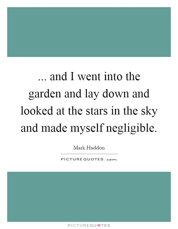 ... and I went into the garden and lay down and looked at the stars in the sky and made myself negligible Picture Quote #1