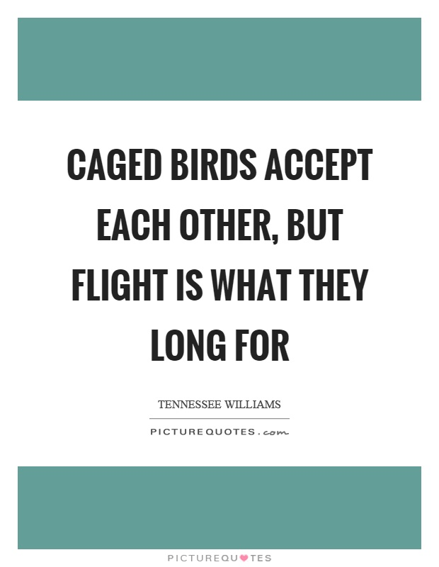 Caged birds accept each other, but flight is what they long for Picture Quote #1
