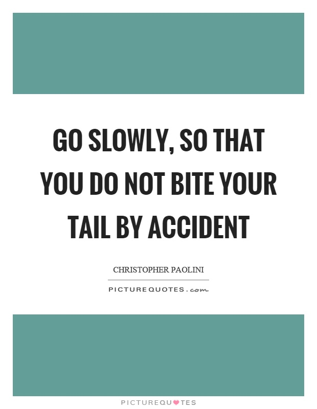Go slowly, so that you do not bite your tail by accident Picture Quote #1