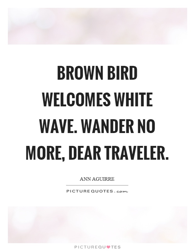 Brown bird welcomes white wave. Wander no more, dear traveler Picture Quote #1