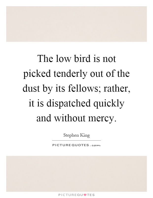 The low bird is not picked tenderly out of the dust by its fellows; rather, it is dispatched quickly and without mercy Picture Quote #1