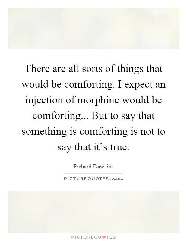There are all sorts of things that would be comforting. I expect an injection of morphine would be comforting... But to say that something is comforting is not to say that it's true Picture Quote #1
