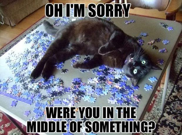 Oh, I'm sorry, were you in the middle of something? Picture Quote #1