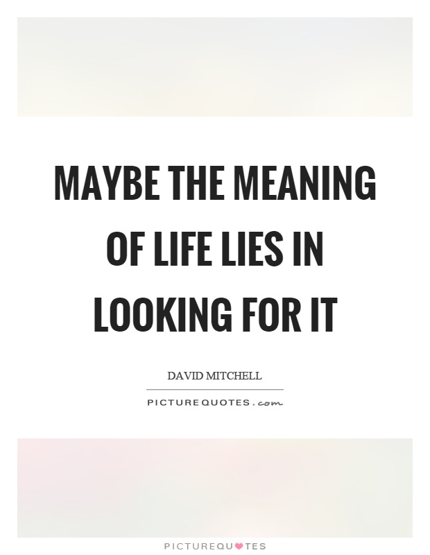 Maybe the meaning of life lies in looking for it Picture Quote #1