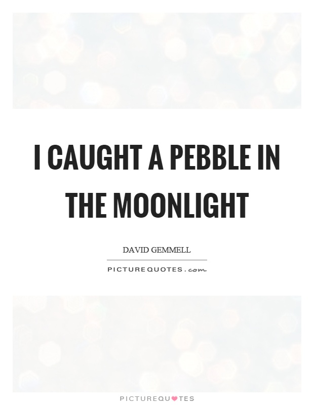 I caught a pebble in the moonlight Picture Quote #1