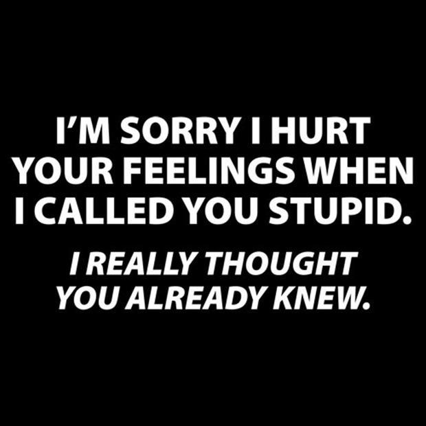 I'm sorry I hurt your feelings when I called you stupid. I really thought you already knew Picture Quote #1
