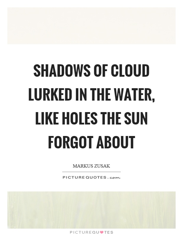 Shadows of cloud lurked in the water, like holes the sun forgot about Picture Quote #1