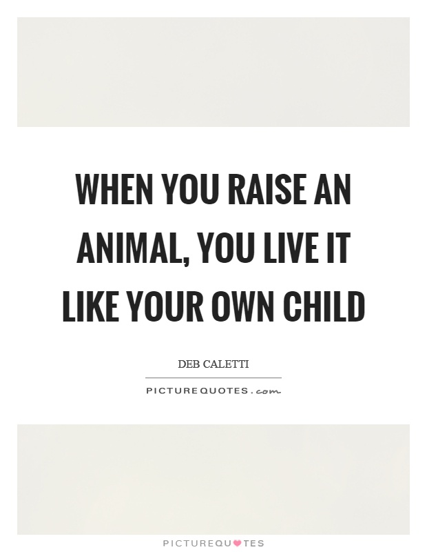 When you raise an animal, you live it like your own child Picture Quote #1