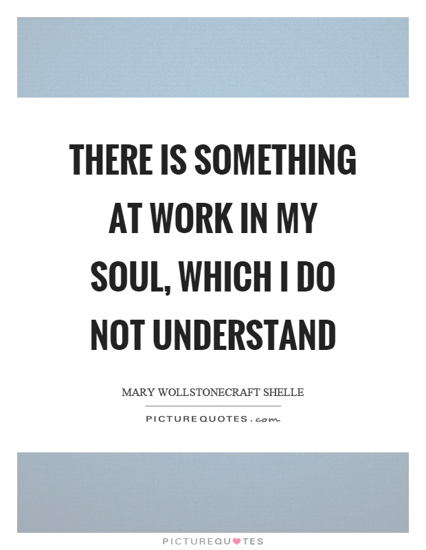 There is something at work in my soul, which I do not understand Picture Quote #1