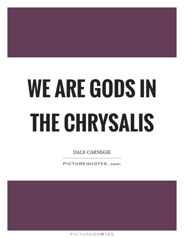 We are gods in the chrysalis Picture Quote #1