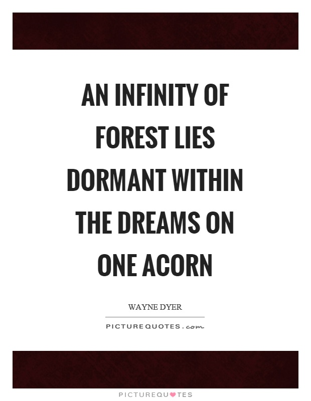 An infinity of forest lies dormant within the dreams on one acorn Picture Quote #1