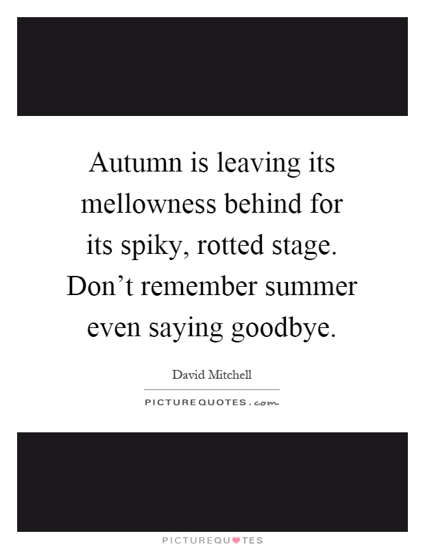 Autumn is leaving its mellowness behind for its spiky, rotted stage. Don't remember summer even saying goodbye Picture Quote #1